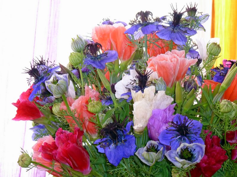 Très Bouquet de la semaine . - le blog de zaz' RF19
